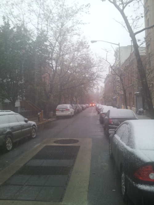 New York - First snow of the season Nov 2012
