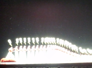 NYC - Rockettes Toy Soldier