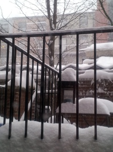 NYC - snow totals 9.5 inches today