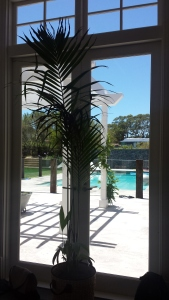 The fabulous pool area of our location house